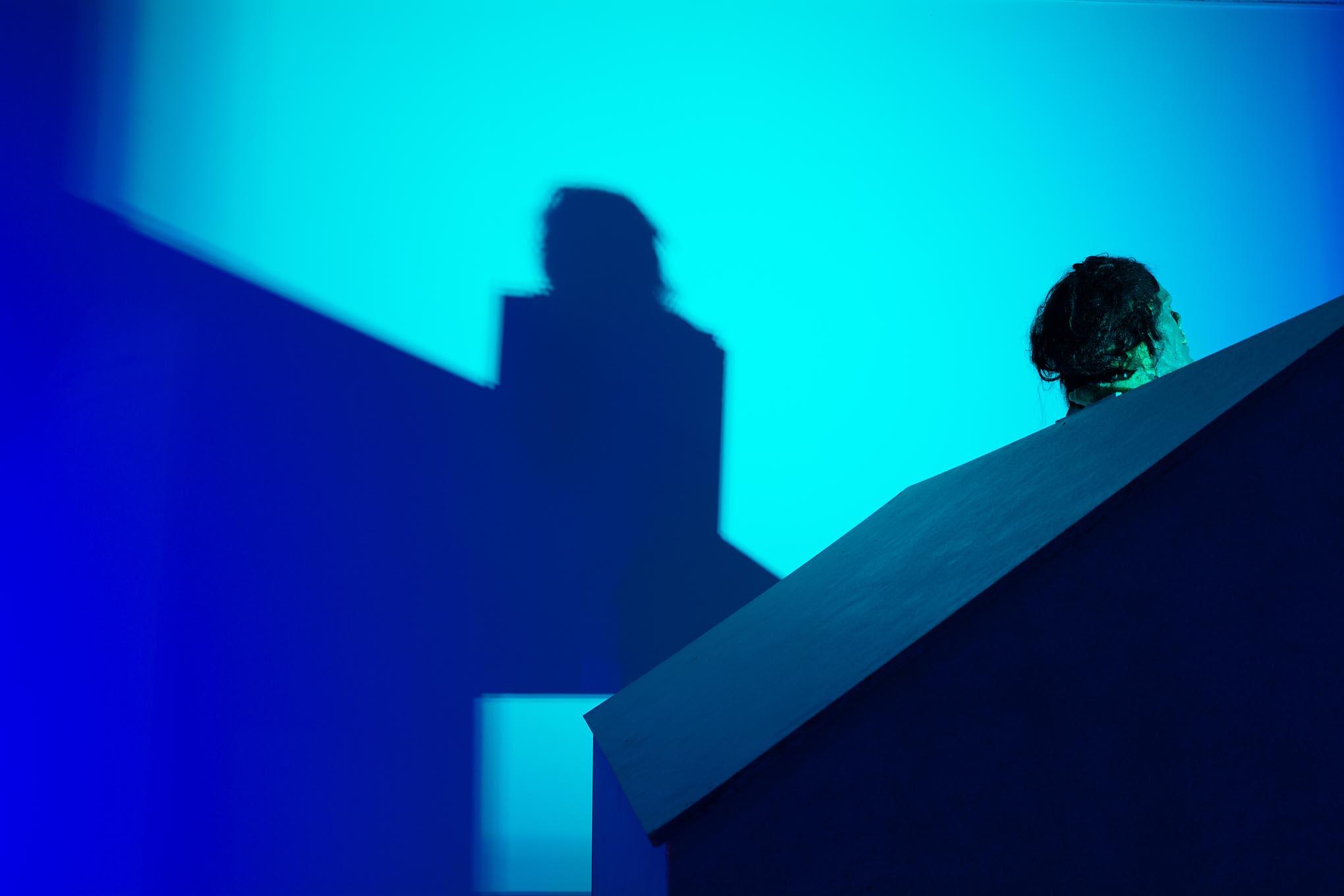 Schaduw van een huisje en een hoofd in beeldende kunst expo.